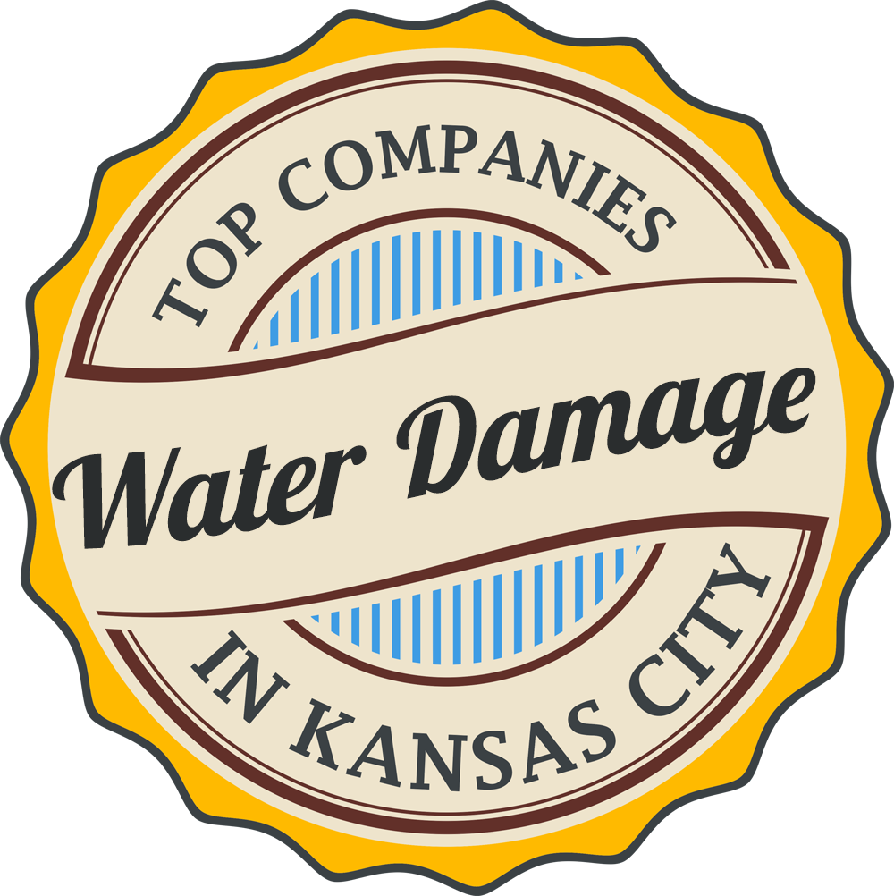 water damage restoration companies